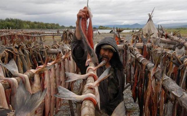 Промысловая-рыба-Названия-описания-и-виды-промысловой-рыбы-4