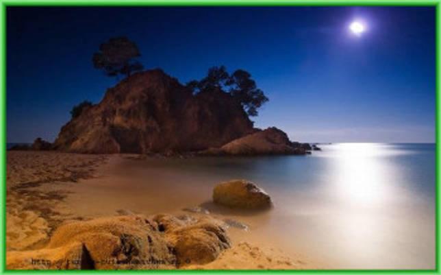 Райская картина на берегу Индийского Океана