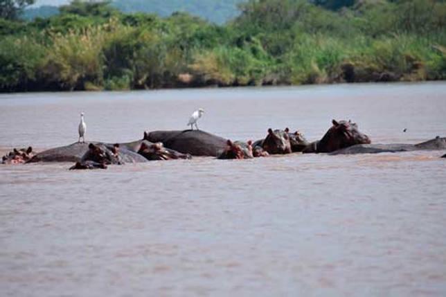 Реки, впадающие в Индийский океан - названия, фото и описание 8