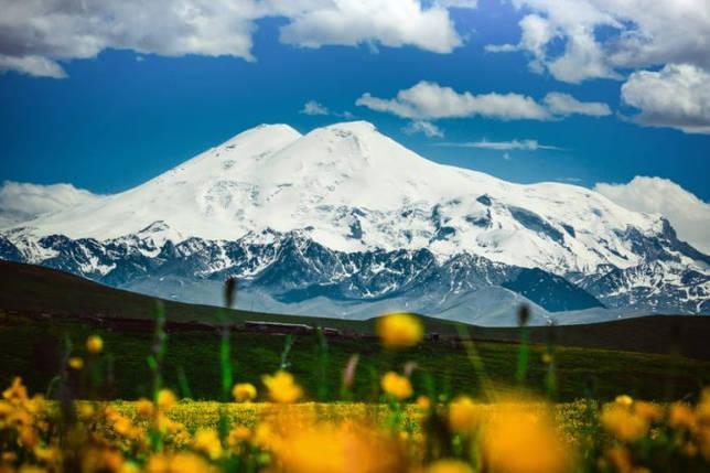 Животный мир Кавказа — список, характеристика и фото